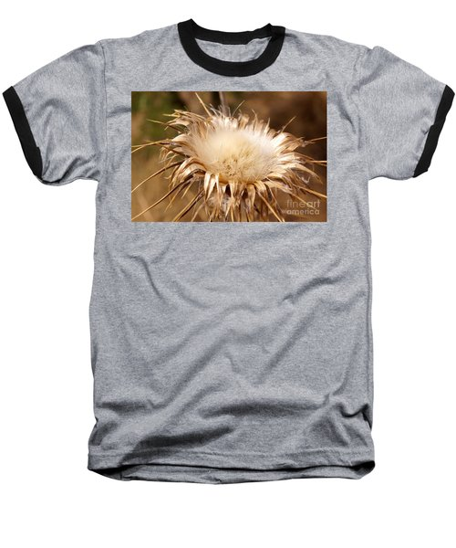 Golden Thistle Baseball T-Shirt