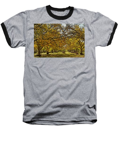 Golden Walnut Orchard Baseball T-Shirt