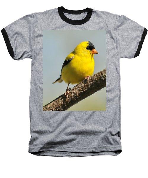 Goldfinch 306 Baseball T-Shirt