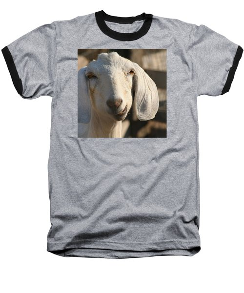 Goofy Goat Baseball T-Shirt by Art Block Collections