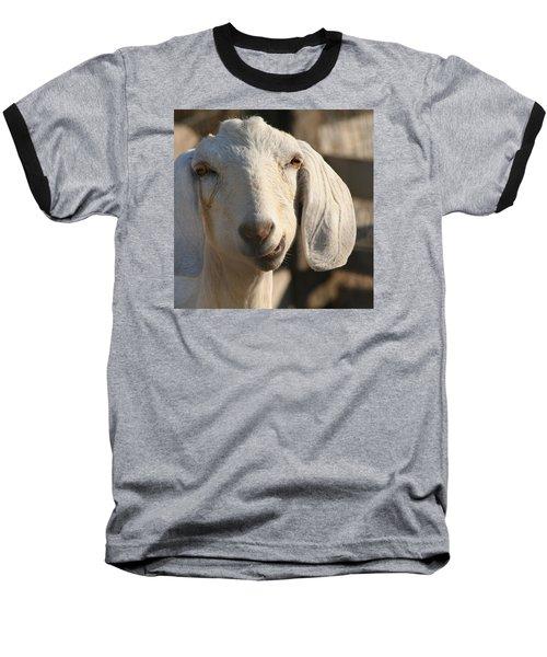 Goofy Goat Baseball T-Shirt