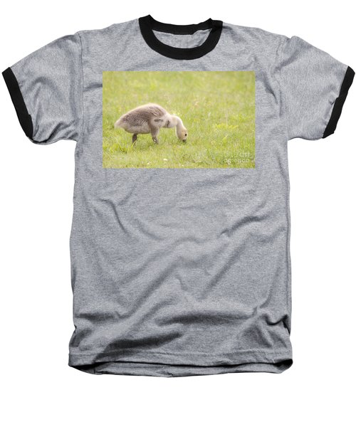 Baseball T-Shirt featuring the photograph Gosling by Jeannette Hunt