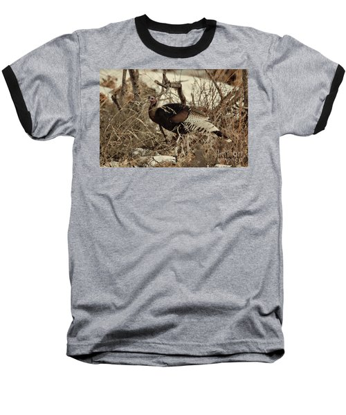 Gould's Wild Turkey Xii Baseball T-Shirt