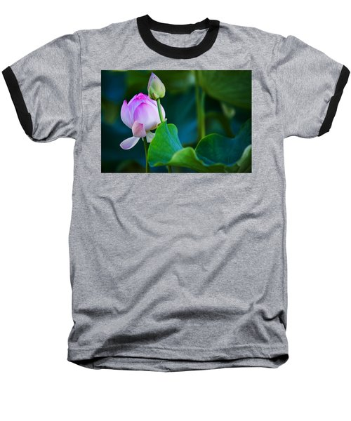 Graceful Lotus. Pamplemousses Botanical Garden. Mauritius Baseball T-Shirt by Jenny Rainbow