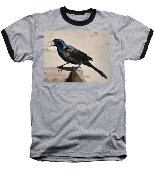 Grackle Chow Down Baseball T-Shirt