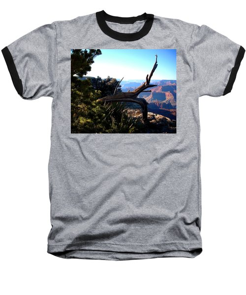 Grand Canyon Dead Tree Baseball T-Shirt