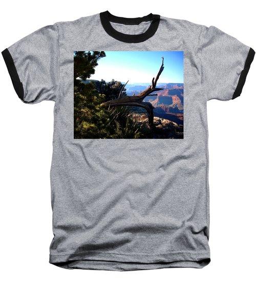 Grand Canyon Dead Tree Baseball T-Shirt