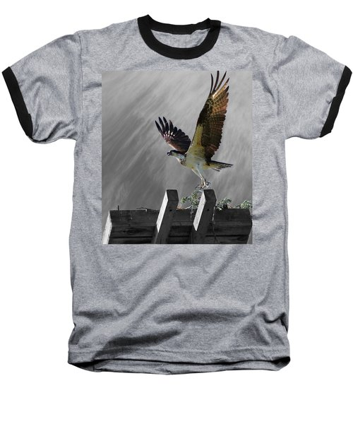 Grand Ole Osprey Baseball T-Shirt by Davandra Cribbie