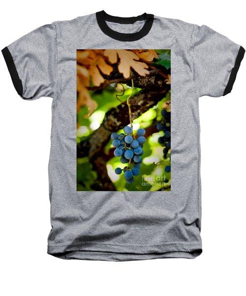 Grape Cluster Baseball T-Shirt