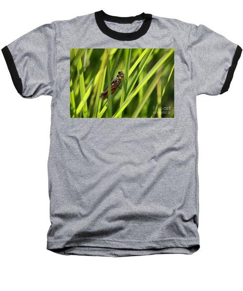 Grasshopper In Grass Baseball T-Shirt