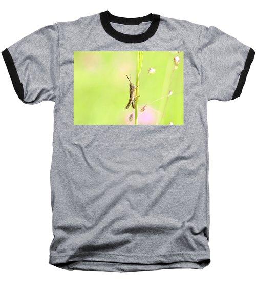 Grasshopper  Baseball T-Shirt by Tommytechno Sweden