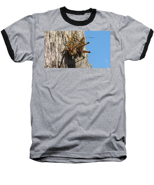 Grasshoppers Baseball T-Shirt by Fortunate Findings Shirley Dickerson