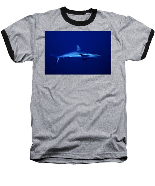 Gray Reef Shark Baseball T-Shirt