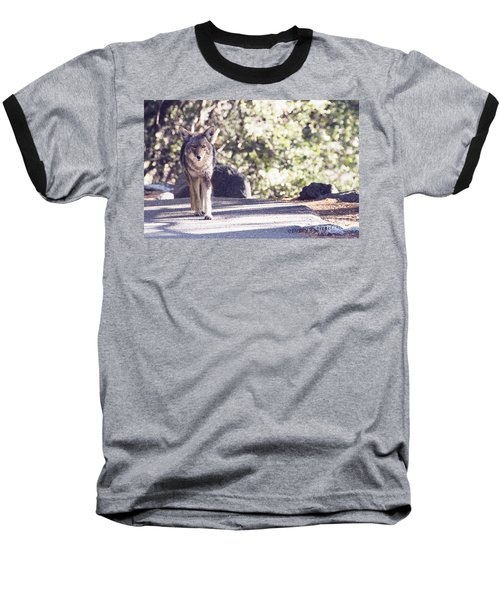 Coyote And Me At Vernal Falls Baseball T-Shirt by Debby Pueschel