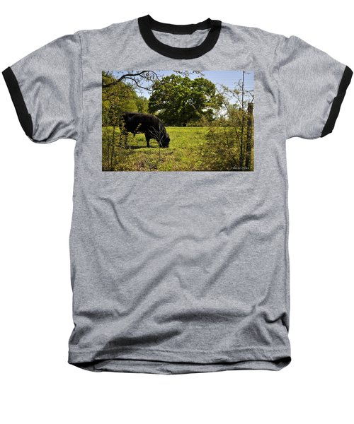 Grazing Alabama Baseball T-Shirt by Verana Stark