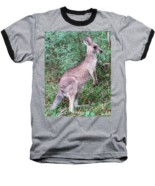 Grazing In The Grass Baseball T-Shirt by Ellen Henneke