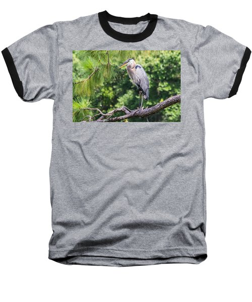 Great Blue Heron I Baseball T-Shirt