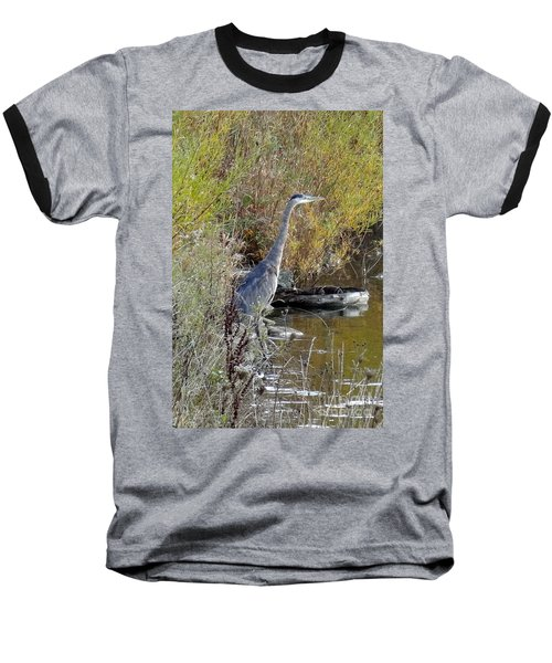 Great Blue Heron - Juvenile Baseball T-Shirt