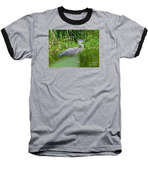 Great Blue Heron  Baseball T-Shirt by Susan Garren