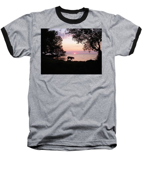 Baseball T-Shirt featuring the photograph Great Dane Sunset by Aimee L Maher Photography and Art Visit ALMGallerydotcom
