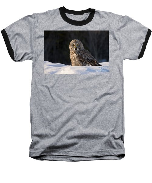 Great Gray Owl In Snow Baseball T-Shirt