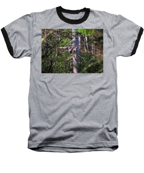 Great Grey Owl Pounces  Baseball T-Shirt
