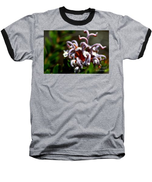 Great Spider Flower Baseball T-Shirt by Miroslava Jurcik