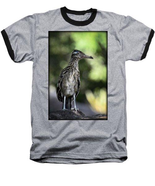 Greater Roadrunner  Baseball T-Shirt