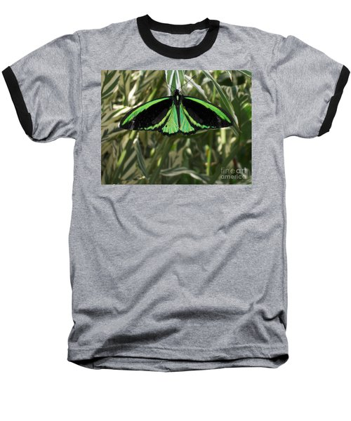 Baseball T-Shirt featuring the photograph Green Butterfly by Brenda Brown