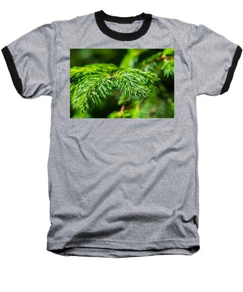 Green Christmas Tree 2 Baseball T-Shirt by Alexander Senin