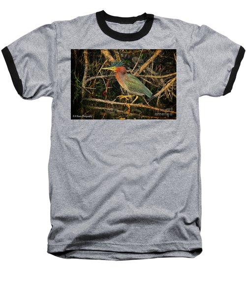 Green Heron Basking In Sunlight Baseball T-Shirt