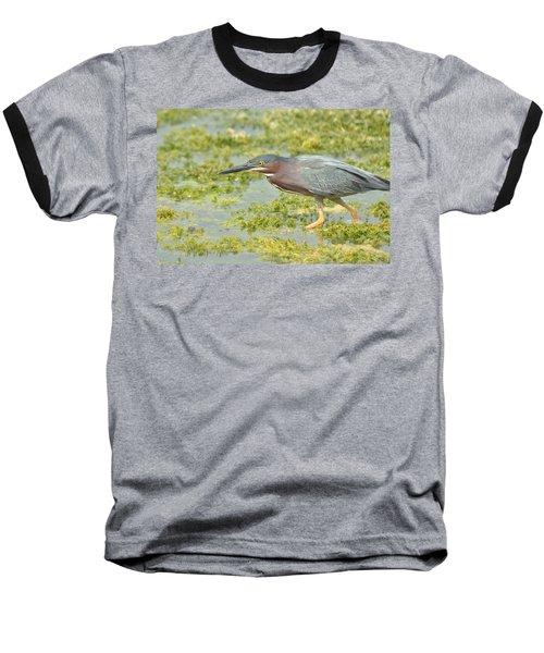 Green Heron On The Hunt Baseball T-Shirt