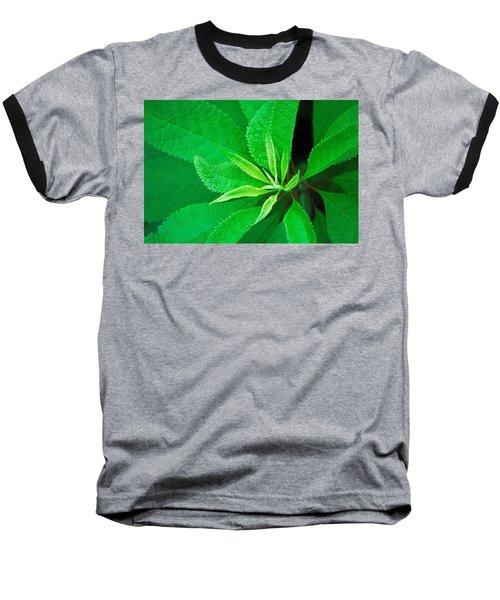 Green Baseball T-Shirt by Ludwig Keck