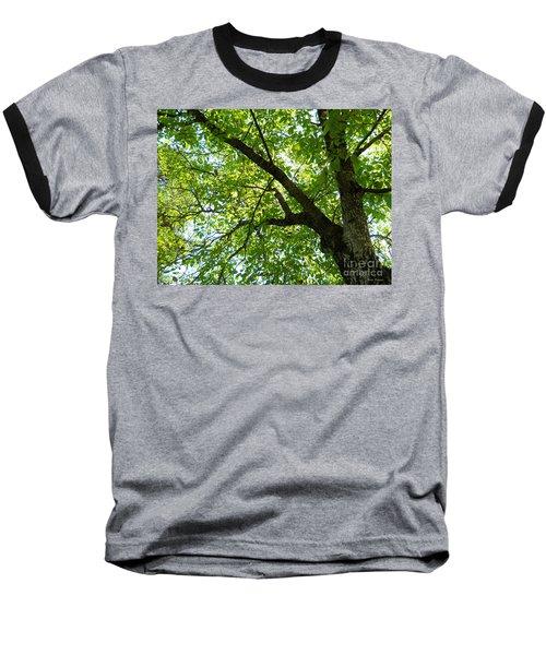 Green Baseball T-Shirt by Ramona Matei