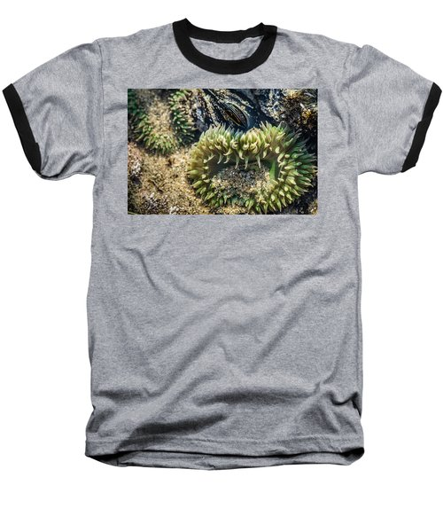 Green Sea Anemone Baseball T-Shirt