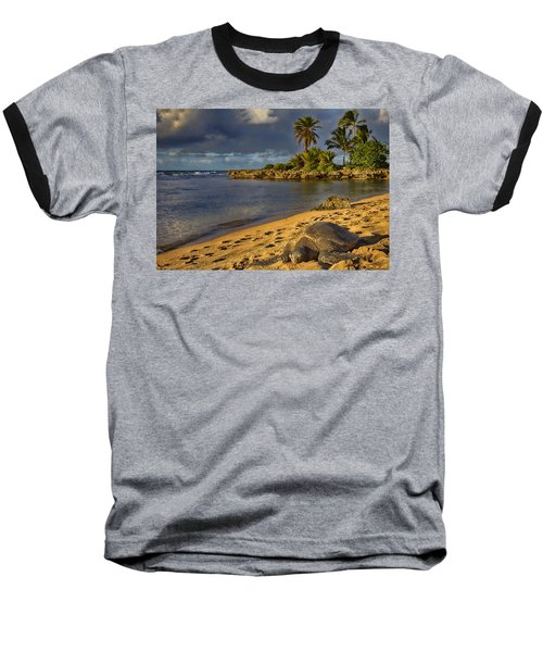 Green Sea Turtle At Sunset Baseball T-Shirt by Douglas Barnard