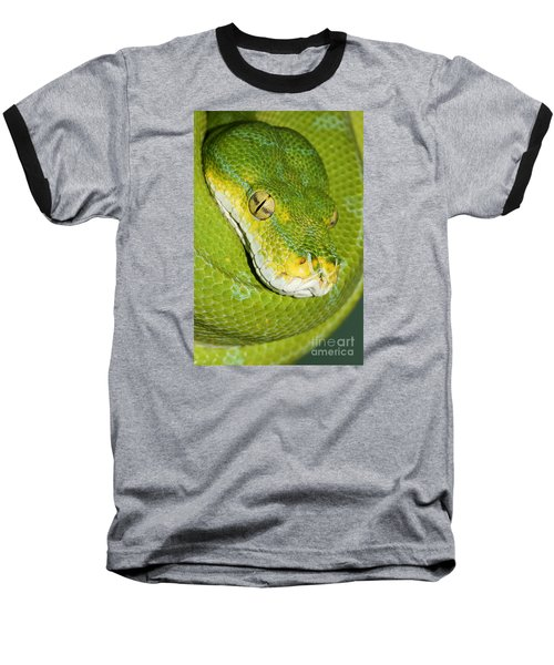 Baseball T-Shirt featuring the photograph Green Tree Python #2 by Judy Whitton