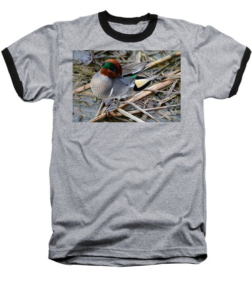 Baseball T-Shirt featuring the photograph Green-winged Teal by Debra Martz