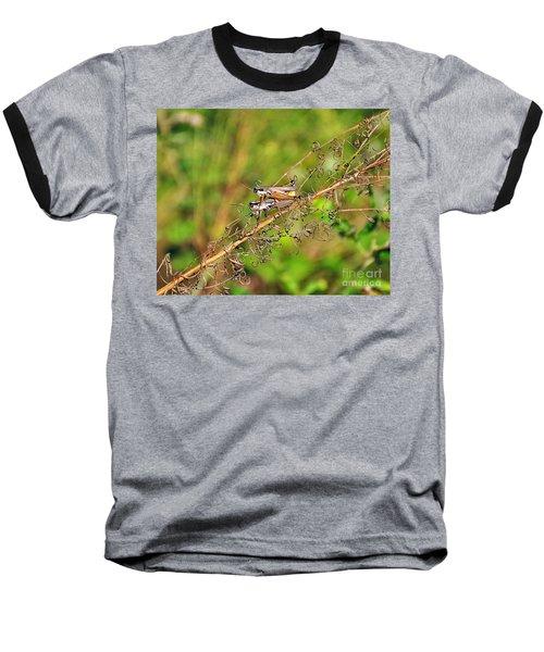 Gregarious Grasshoppers Baseball T-Shirt