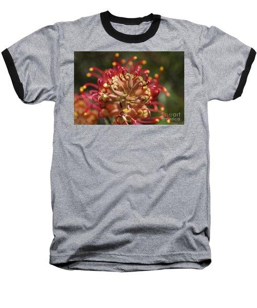 Grevillea Superb Australian Flora Baseball T-Shirt