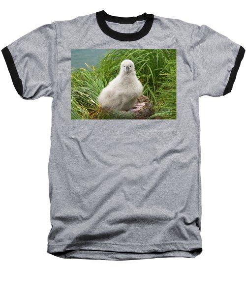 Grey-headed Albatross Chick Baseball T-Shirt by Yva Momatiuk John Eastcott