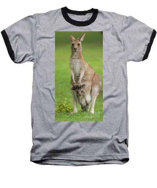Grey Kangaroo And Joey  Baseball T-Shirt