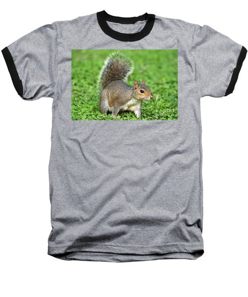 Baseball T-Shirt featuring the photograph Grey Squirrel by Antonio Scarpi