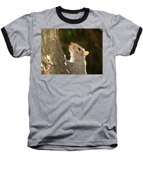 Grey Squirrel Baseball T-Shirt by Ron Harpham