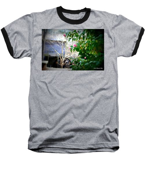 Baseball T-Shirt featuring the photograph Grist Mill Roses by Tara Potts