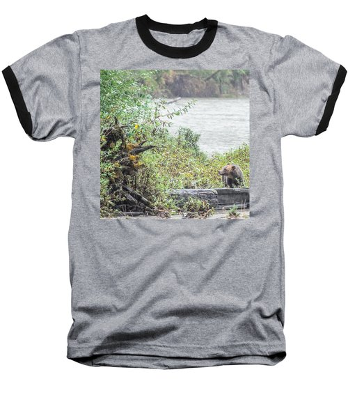 Grizzly Bear Late September 2 Baseball T-Shirt