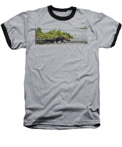 Grizzly Bear Late September 4 Baseball T-Shirt