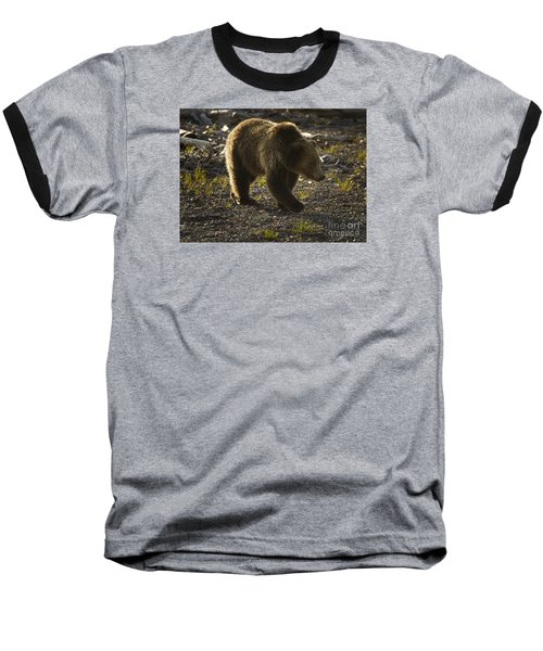 Grizzly Bear-signed-#4429 Baseball T-Shirt by J L Woody Wooden