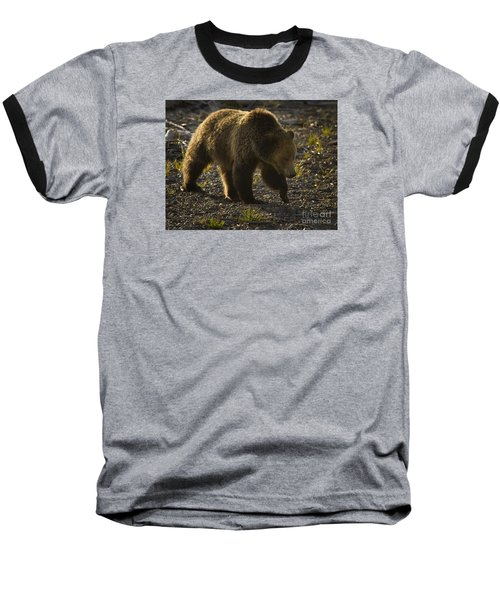 Grizzly Bear-signed-#4435 Baseball T-Shirt by J L Woody Wooden