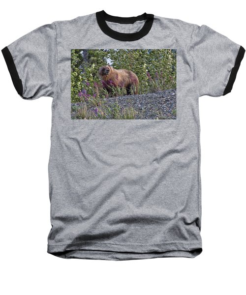 Grizzly Baseball T-Shirt by David Gleeson